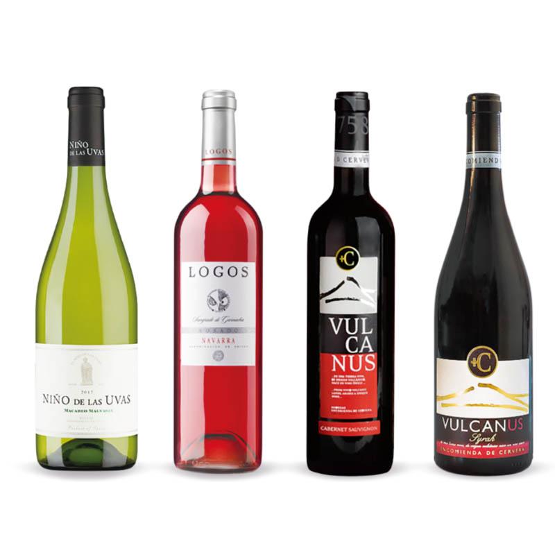人気のスペインワイン【4種類】12本