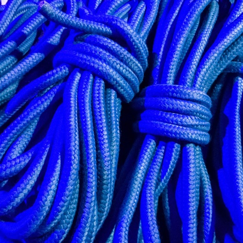 本格 SMロープ 10m(青)