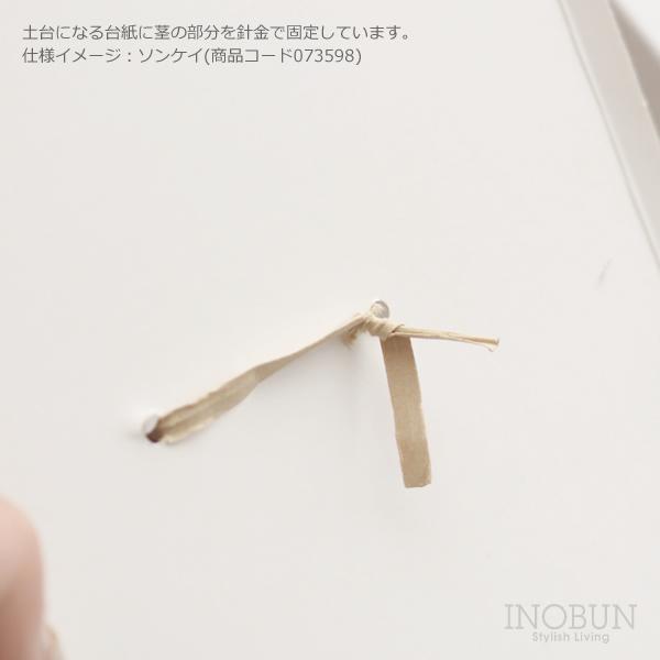 プリザーブドフラワー 造花 SOMU kotaba ココロ プレゼント 花 ドライフラワー ブーケ インテリア ギフト 夏