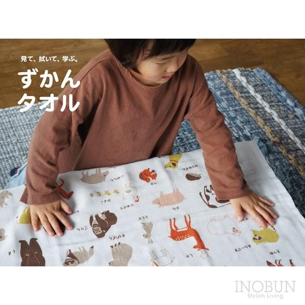 ずかんタオル ミニバスタオル 47 x 100cm ひらがな 日本製 プールタオル こどもバスタオル