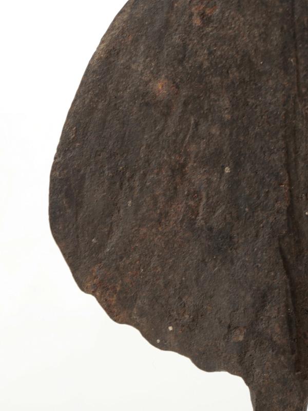 マンビラ族 シャンバ族 貨幣