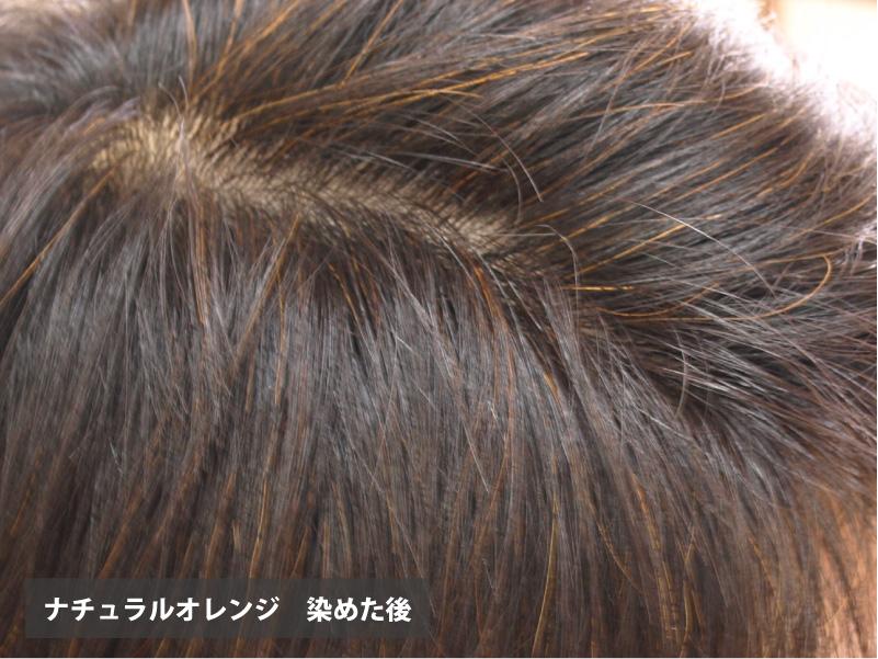 ヘナ初めてさんセット〔頭皮をケアしながら白髪染め〕天然ヘアカラー★送料無料★|ヘナ100g&ヘナ染めセット
