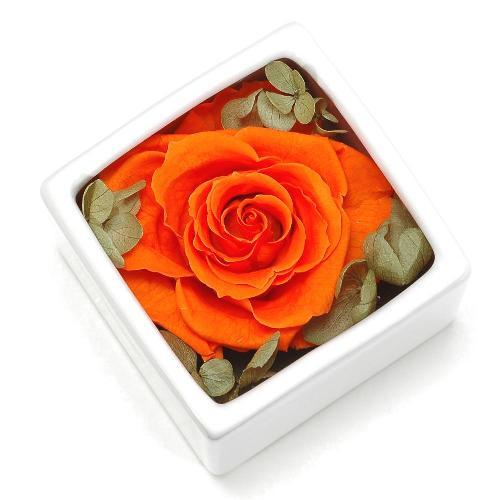 プリザーブドフラワー オレンジ CUBE プレゼント 記念日 公式通販サイト