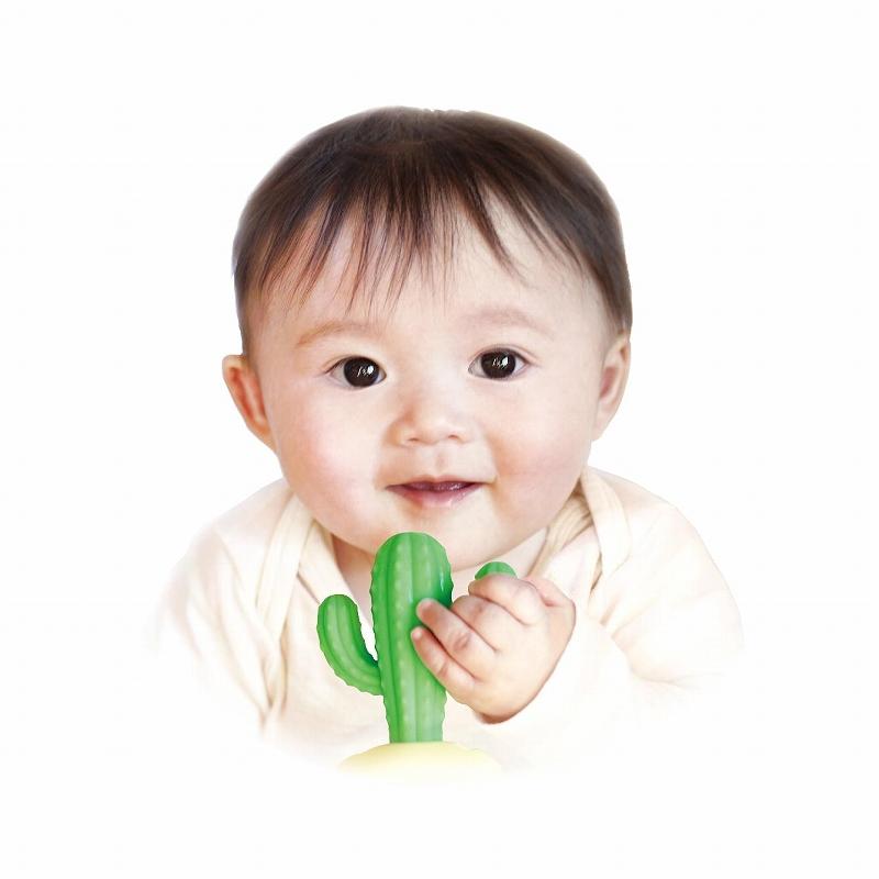【送料無料】 EDISON Mama カミカミBabyサボテン はがため 歯がため (3ヶ月から対象) 思わず写真を撮りたくなっちゃう