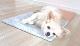 ひんやりマット大理石 バルディリオ 400×400×13