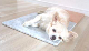 ひんやりマット大理石 アンティークグリーン 400×400×13