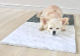ひんやりマット大理石 ペルリーノキャロ柾目 400×400×13