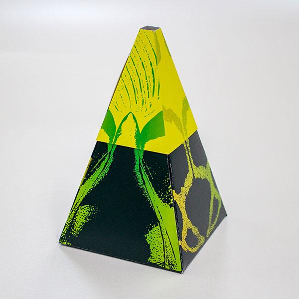 ハココレ Vase Garden M TypeA (3枚入り)