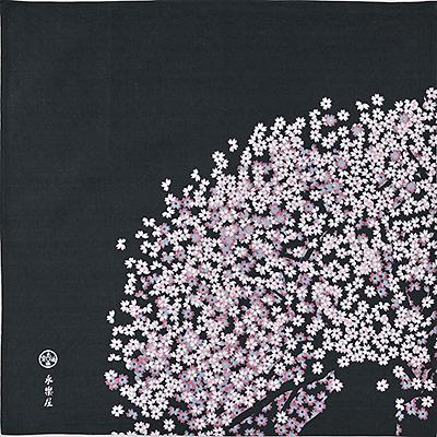小風呂敷 「老い桜」