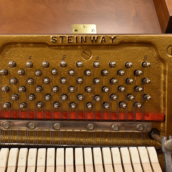 STEINWAY & SONS  F40
