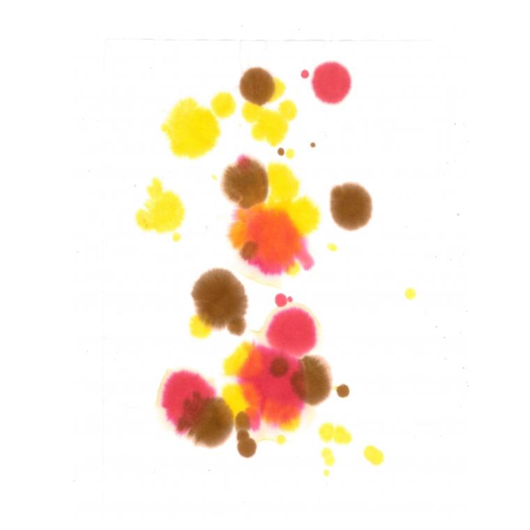 染料 みやこ染の和紙ぞめカラー(徳用) 500ml (全8色)/ 和紙染め 染める 材料 工作  染め紙 紙染め 幼稚園 保育園  桂屋 みや古染め みやこぞめ 業務用 ワークショップ【お取り寄せ】【宅配便】