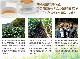 有機JAS認証オーガニック紅茶『和香味 桐箱入り【熟成金銀タイプ】 和香味「金」(50g)、和香味「銀」(50g)』 しずおか食セレクション 平成25年度認定商品 全国推奨観光土産品審査会 推奨品