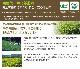 葉っピイ向島園 赤ちゃん緑茶(バラ・タグ無し) [内容量 2g×20] 有機JAS【無農薬・無化学肥料】