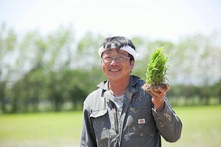 【島田農園】えにわまい ななつぼし 5kg