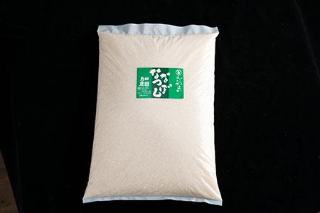 【島田農園】えにわまい ななつぼし 10kg