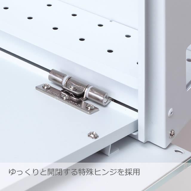 丸三タカギ 郵便ポスト SNOOPY スヌーピーポスト グラフィック NSPGP-C-ナシ ダイヤル錠付き