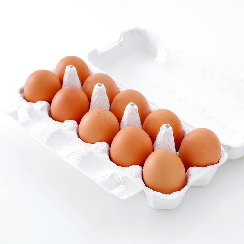 稲見商店 特選「那須御養卵 極」 10個入