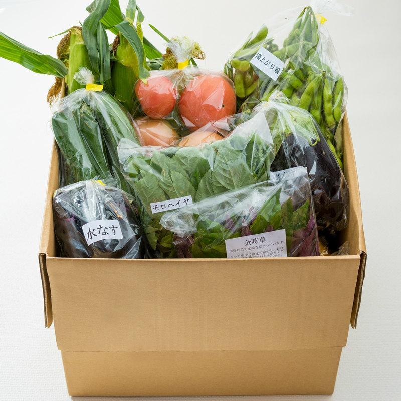 10月30日以降 日付指定不可 エピナール那須 契約農家の新鮮野菜 1日2箱限定