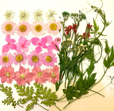 1-03K 押し花素材 ピンクデザインパック