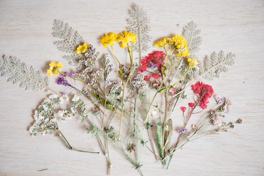 1-103 押し花材料 押し花デザインパック