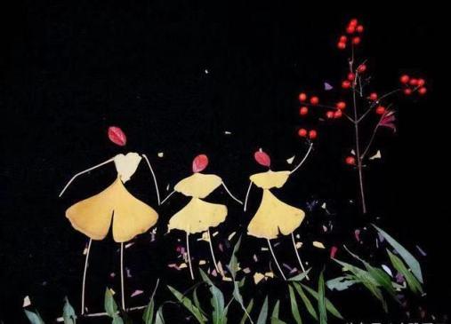1-299 押し花 銀杏の葉