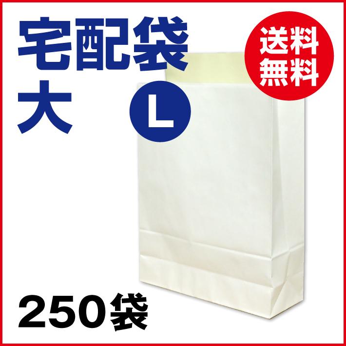 【送料無料】宅配袋 白 大 Lサイズ 250袋 【1袋当り 22.6円 (税込 24.9円)】