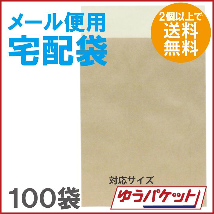 【2個で送料無料】メール便用宅配袋 ゆうパケット対応 100袋