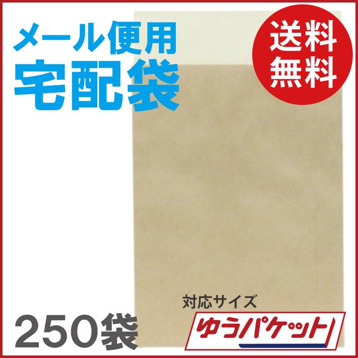 (送料無料)メール便用宅配袋 ゆうパケット対応 250袋