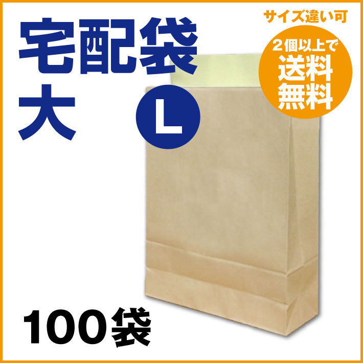 宅配袋 大 Lサイズ 100枚 茶色 クラフト (2個で送料無料)