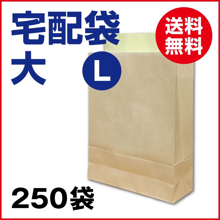 宅配袋 大 Lサイズ 250枚 茶色 クラフト (送料無料)