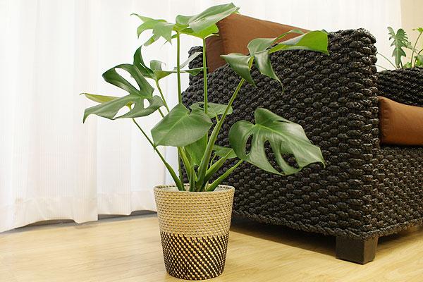 シンセティックラタン 鉢カバー Mサイズ グレー/ブラック