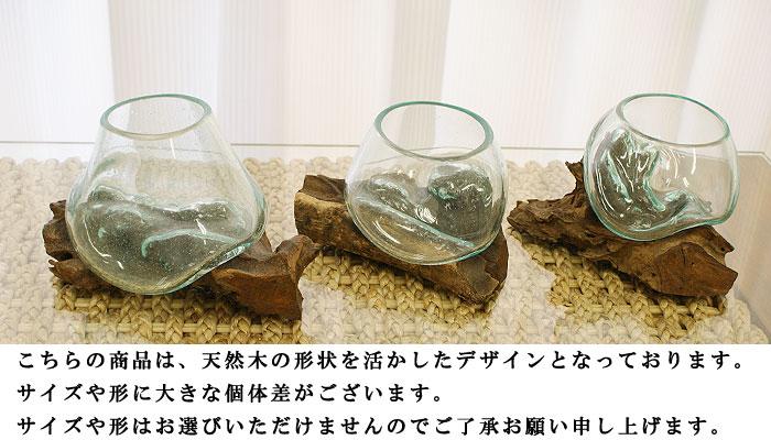 バリガラス&流木 フラワーボウル