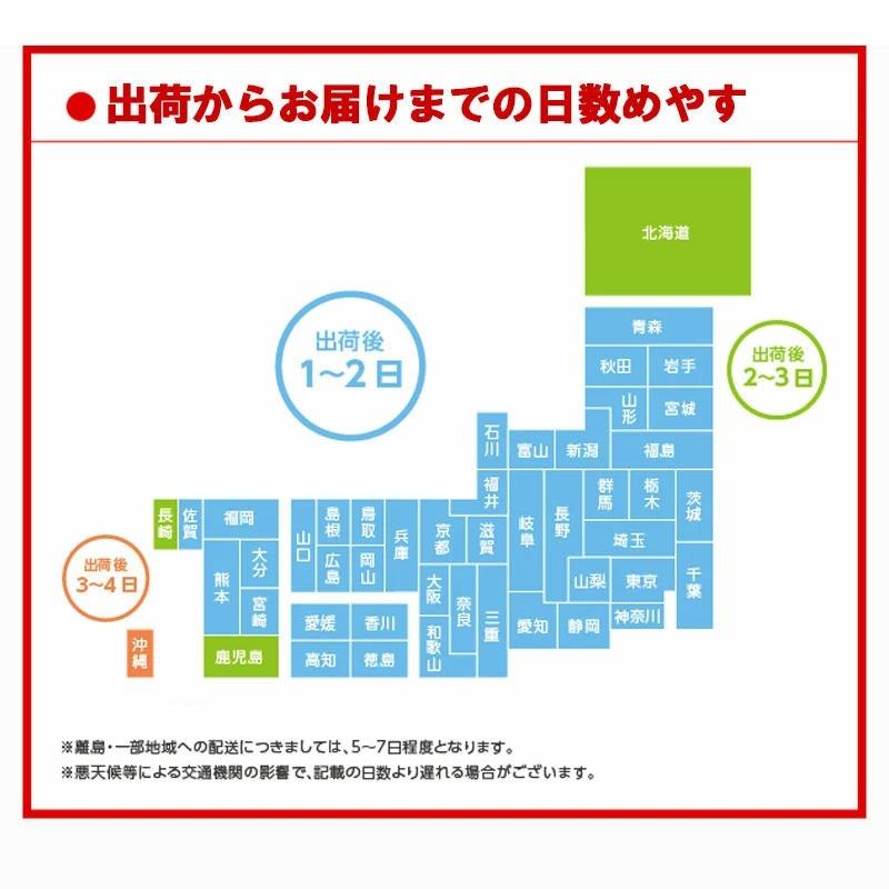 ファンタグレープ 350mlPET × 24本 炭酸 飲料 ドリンク コカ・コーラ社 //メーカー直送 宅配便