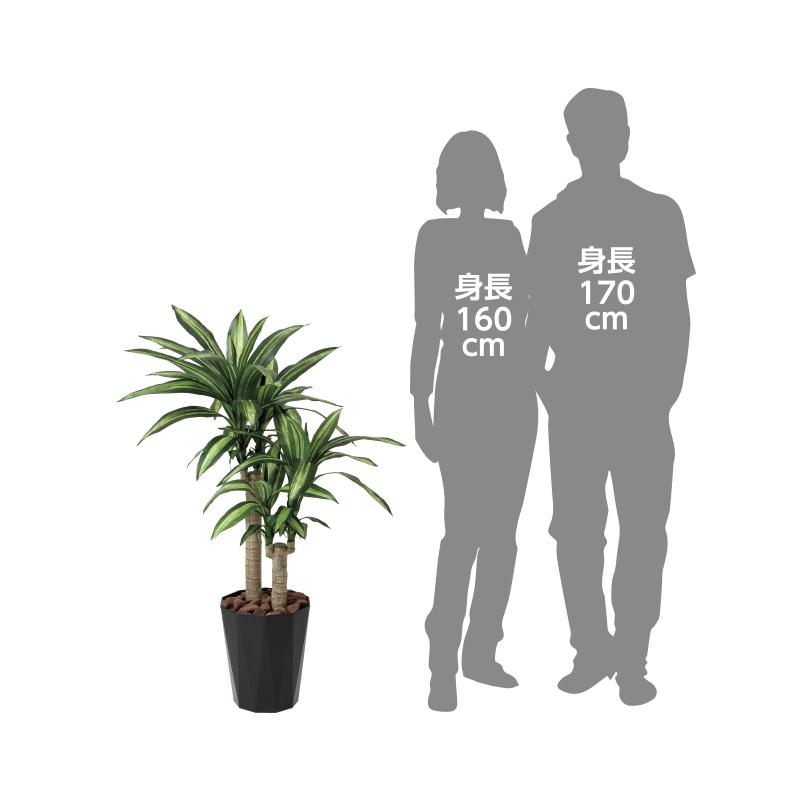 【光の楽園】幸福の木1.1