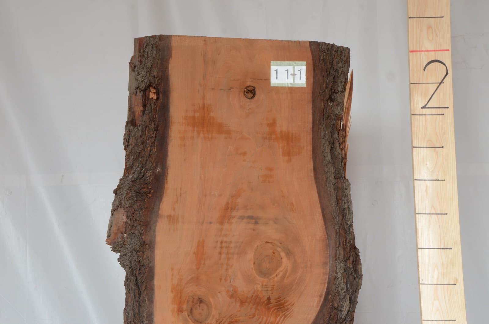 11-001 ヒマラヤ杉 (スギ) 一枚板 ときがわ木材有限会社(埼玉県ときがわ町)