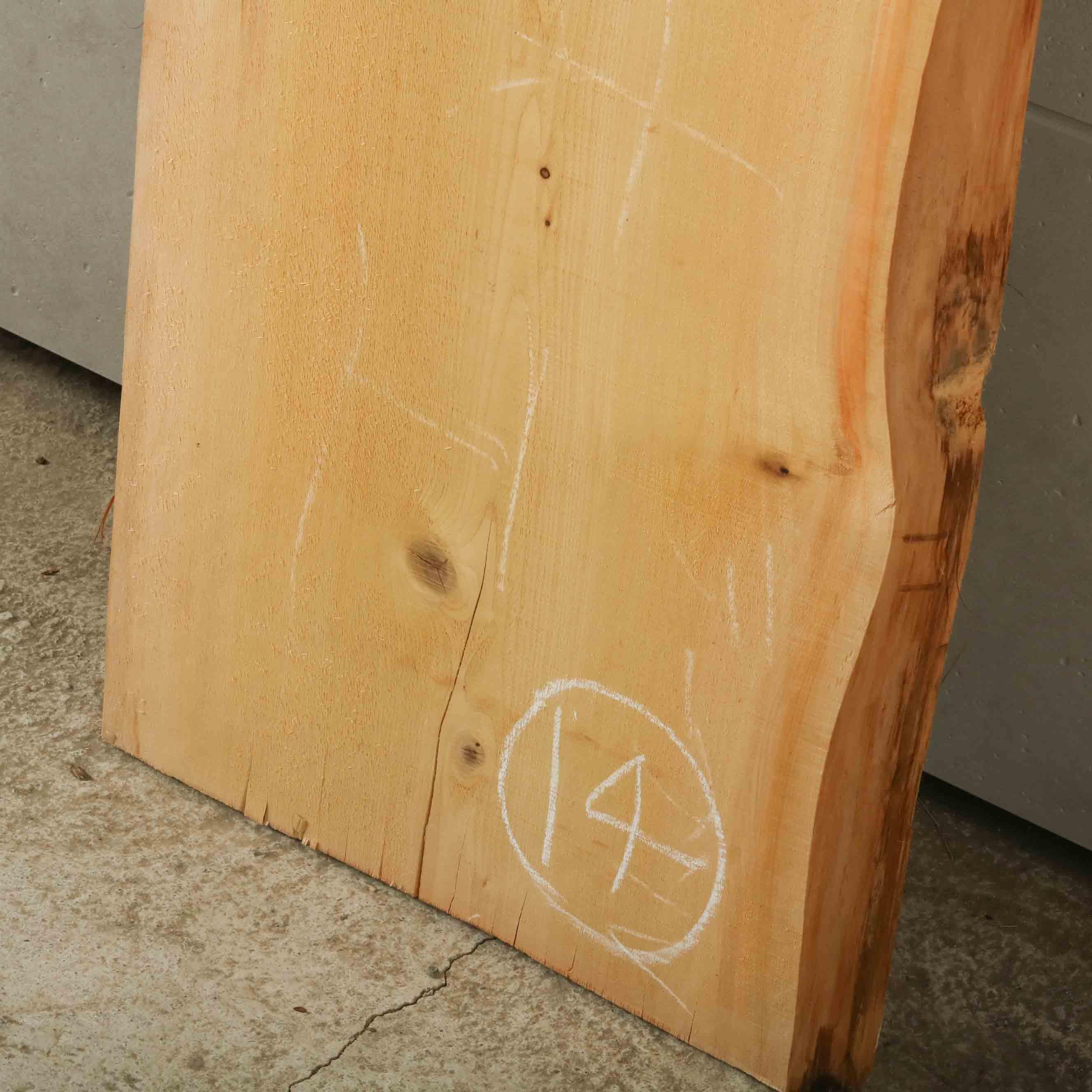 16-014 檜葉 (ヒバ) 一枚板 有限会社村口産業(下北郡)