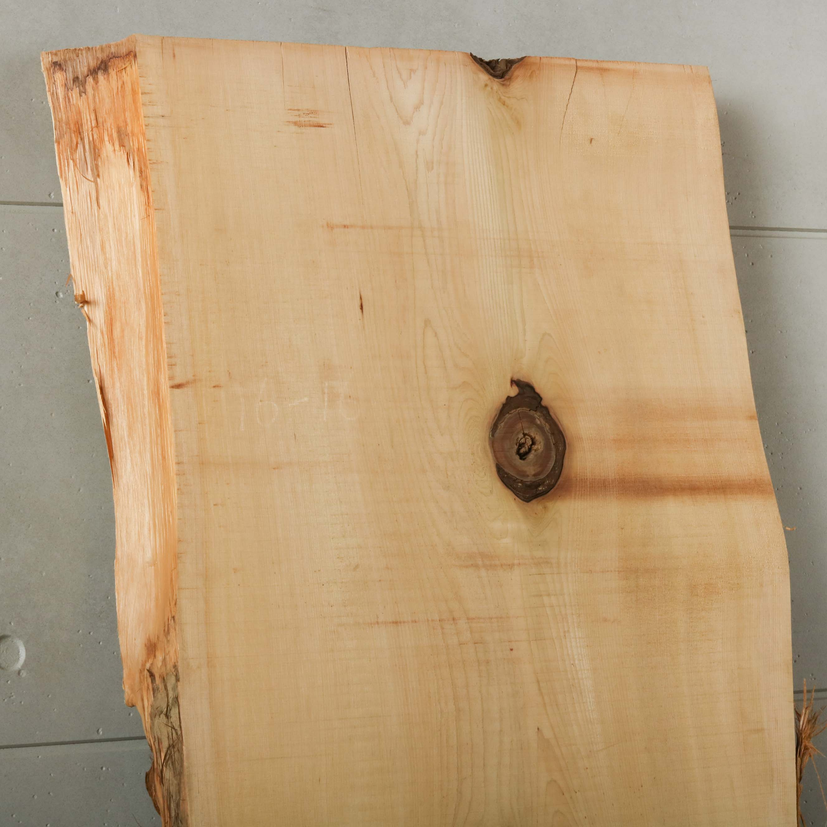 16-016 檜葉 (ヒバ) 一枚板 有限会社村口産業(下北郡)