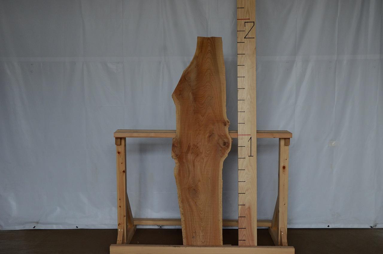 1-017 欅 (ケヤキ) 一枚板 三橋製材所 (あきる野市)