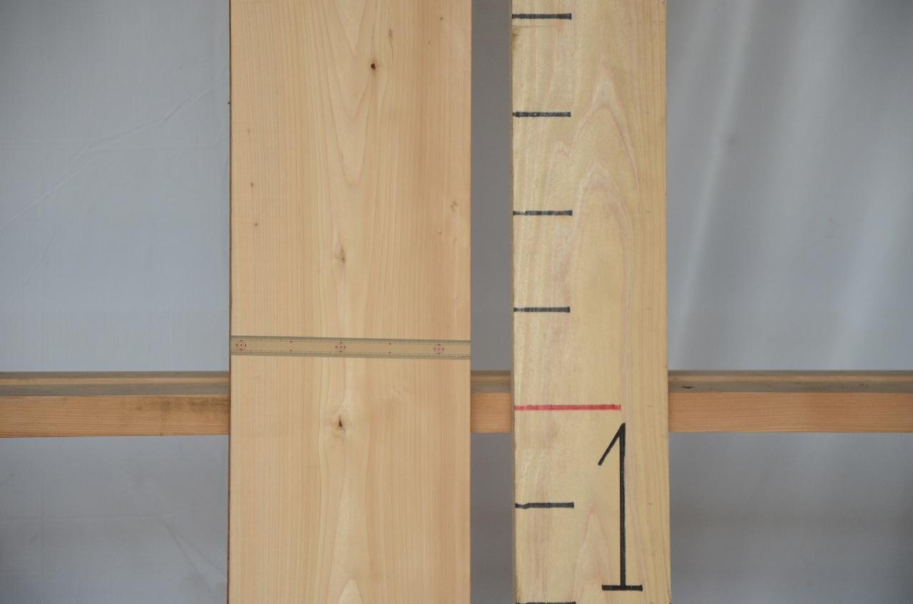 1-055 檜 (ヒノキ) 一枚板 三橋製材所 (あきる野市)