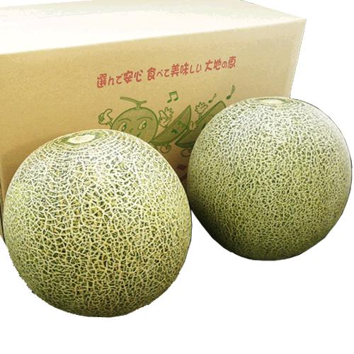 【特別栽培】タカミメロン2個セット(貴味メロン)(送料込み)(クール料金別途)<2021年6月8日受付開始>_s25