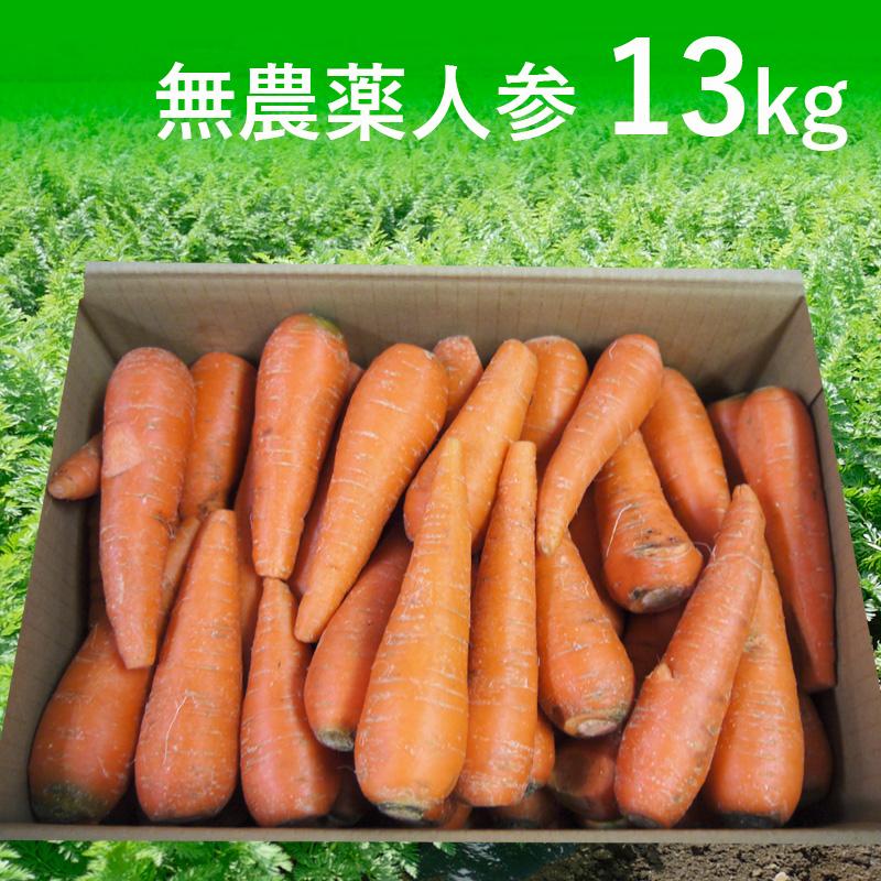 [定期購入]無農薬人参ジュース用13kg(青森・北海道)(送料無料)【訳あり】【有機栽培同等】_s26