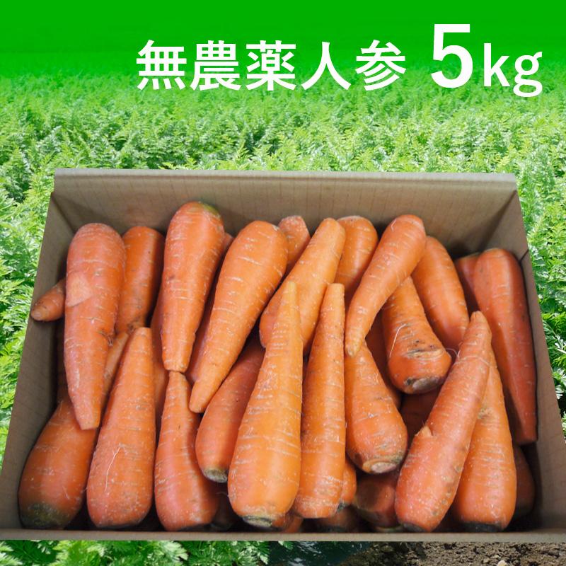 [定期購入]無農薬人参ジュース用5kg(青森・北海道)(送料無料)【訳あり】【有機栽培同等】_s26