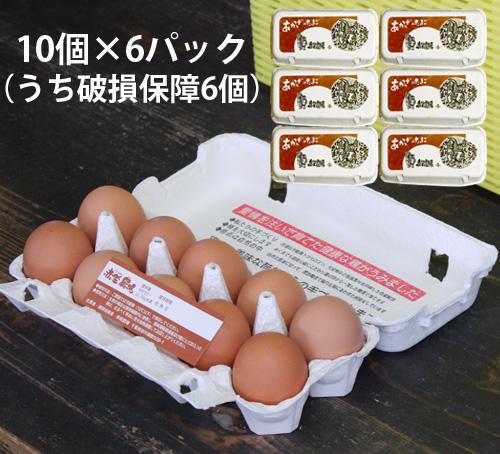 [定期購入]旭愛農 赤座さんのもみじ卵(60個)破損保障6個含む(送料無料)_s90