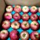 【特別栽培】ジュース用りんご2kg(青森県産・わけあり)_s26
