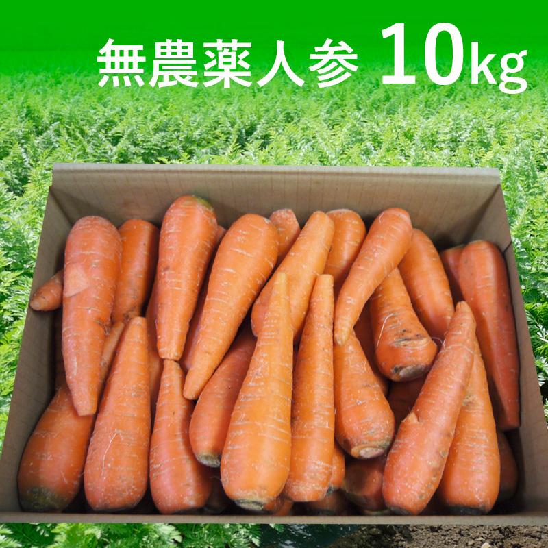 無農薬人参ジュース用10kg(青森・北海道)(送料無料)【訳あり】【有機栽培同等】_s26