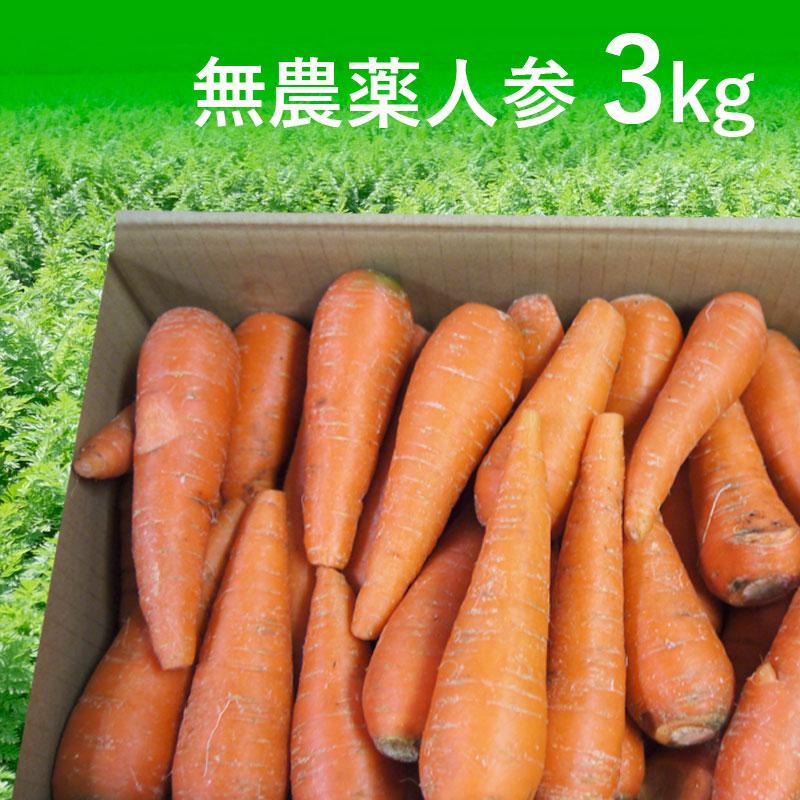 [定期購入]無農薬人参ジュース用3kg(送料無料)【訳あり】【有機栽培同等】_s26