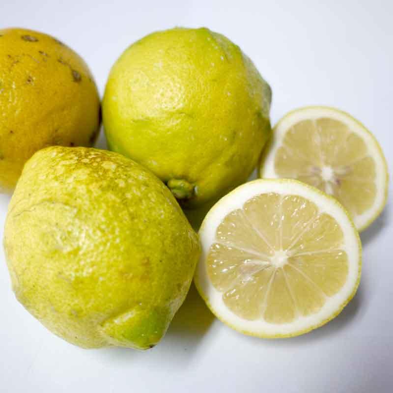 国産レモン3kg前後(無農薬・有機栽培同等品)(防腐剤不使用)(ノーワックス)_s26
