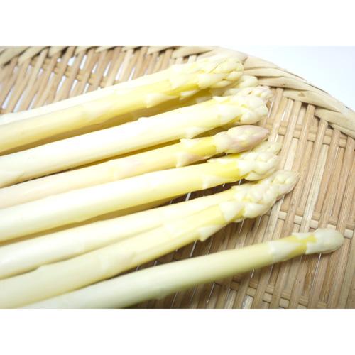 有機栽培ホワイトアスパラ1kg(Lサイズ)(北海道産)(送料無料)<2021年4月20日受付開始>_s25