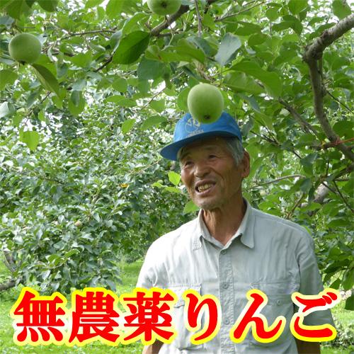 福田さんの無農薬りんご2kg(青森県産)(有機栽培同等品)(送料無料)<ご注文順に出荷>_s26