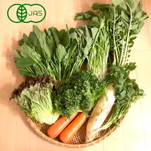 <有機>さんぶの有機野菜セット 6品(送料無料)_s30